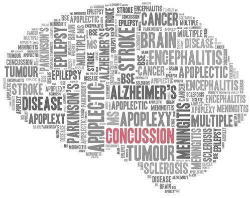 2012 – Concussion Program